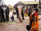 kanchipuram (1 of 1)